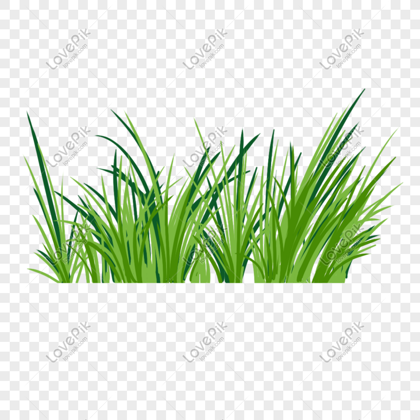 Grass Png Image Picture Free Download 401496165 Lovepik Com