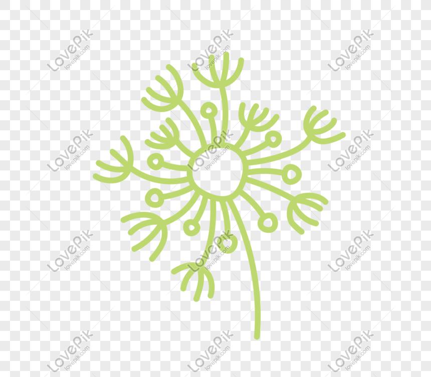 dandelion element png