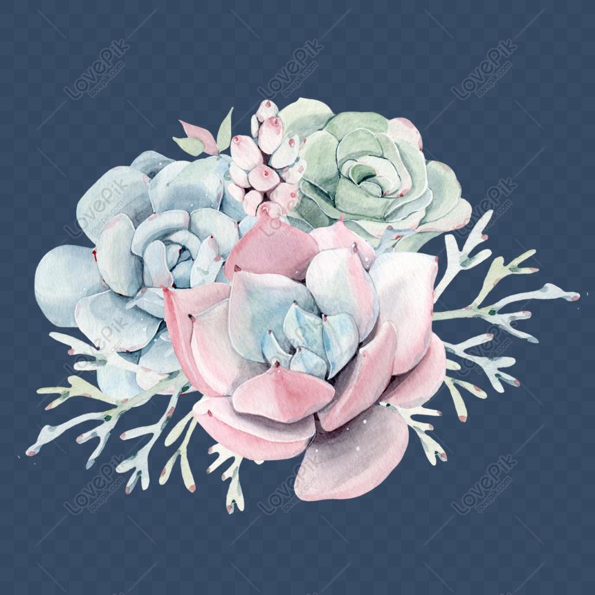Watercolor Succulent Png
