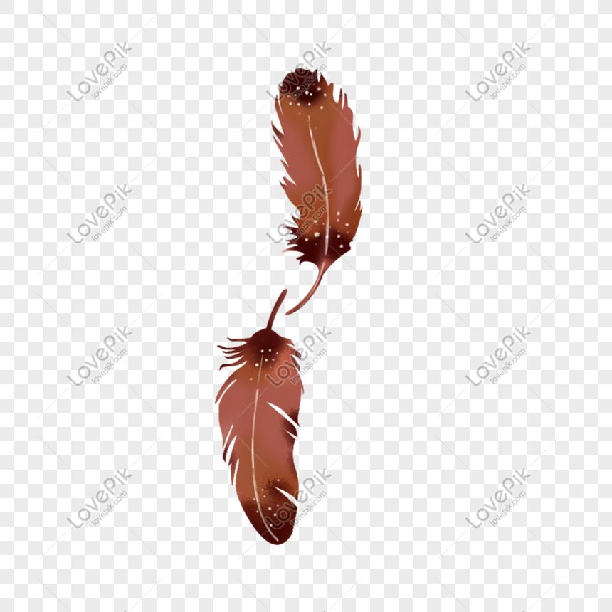 羽毛 png