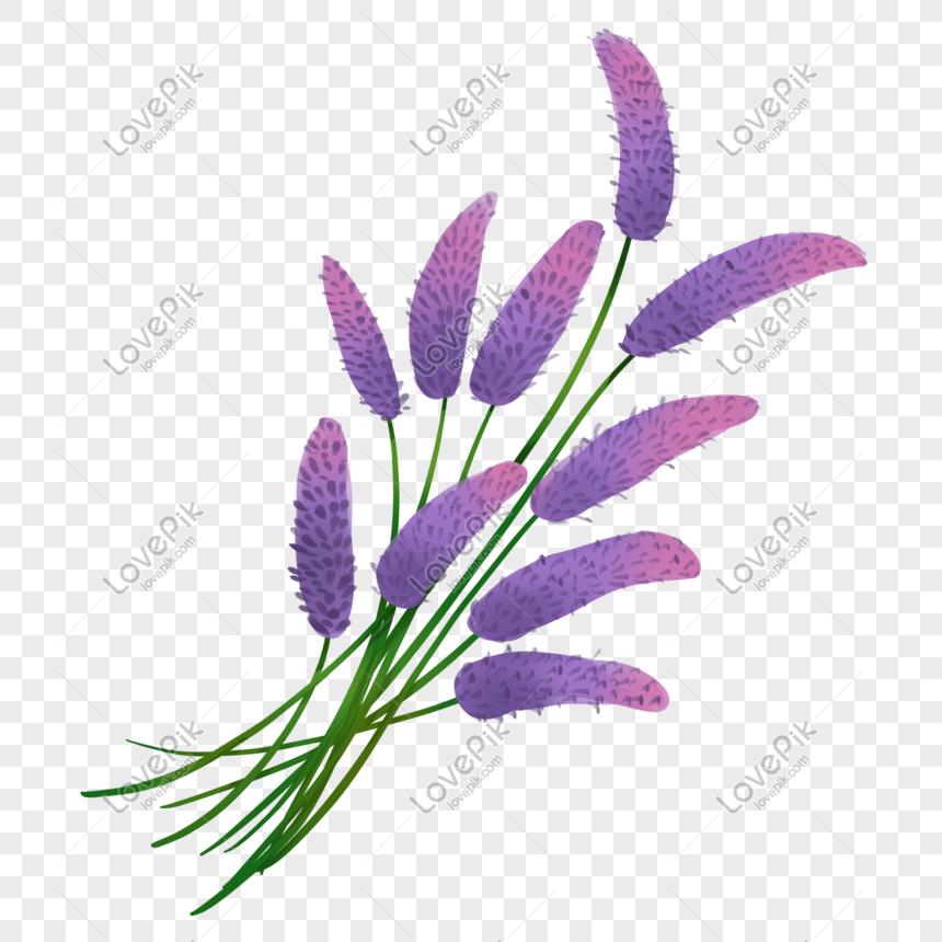 cartoon purple flower illustration png