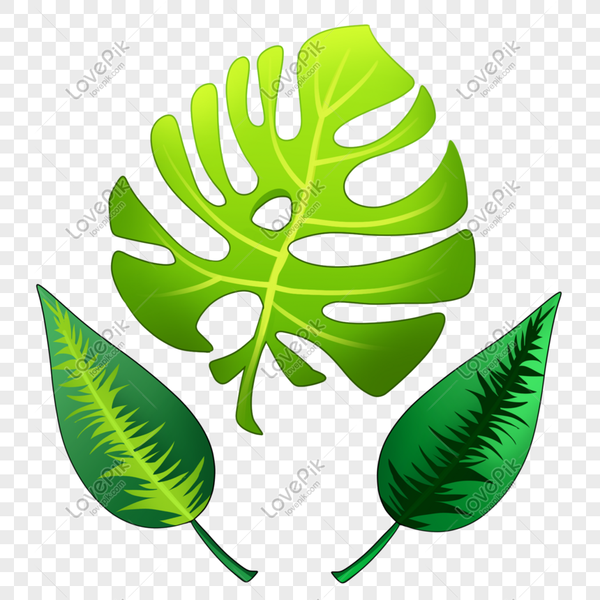 Tropical Leaves Png Image Picture Free Download 401534464 Lovepik Com Polish your personal project or design with these tropical leaves transparent png images, make it even more personalized and more attractive. tropical leaves png image picture free