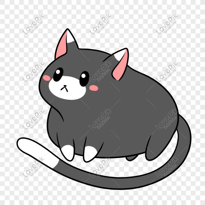 Kucing Hitam Dan Putih Berdiri Di Kaki Pendek Gambar Unduh Gratis Imej 401538145 Format Png My Lovepik Com