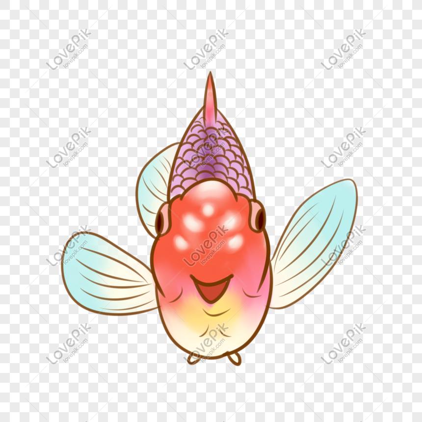 Ikan Kartun Berwarna Warni Png Grafik Gambar Unduh Gratis Lovepik