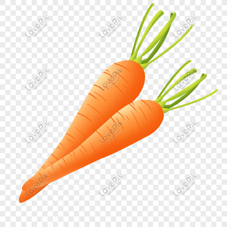 Zanahoria De Otono De Dibujos Animados Imagenes De Graficos Png Gratis Lovepik En esta categoría, ¡encontrarás fantásticas imágenes de zanahorias y gifs animados de zanahorias! zanahoria de otono de dibujos animados