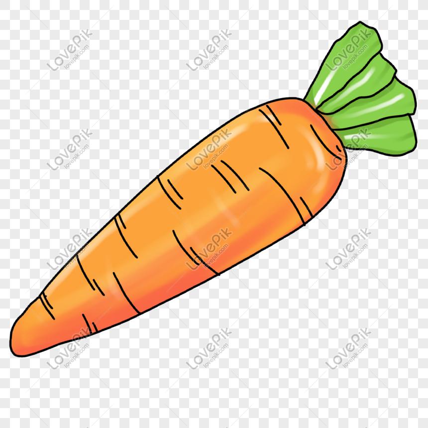 Ilustracion De Dibujos Animados De Zanahoria Imagenes De Graficos Png Gratis Lovepik También puedes estar interesado en dibujos para colorear de la categoría conejos y etiquetas animales de guardería, conejo de pascua. dibujos animados de zanahoria