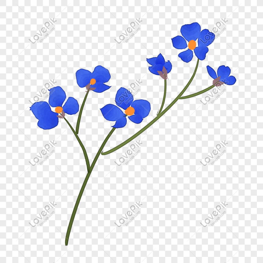Cartoon Blue Forget Me Not Png Image Picture Free Download 401568385 Lovepik Com