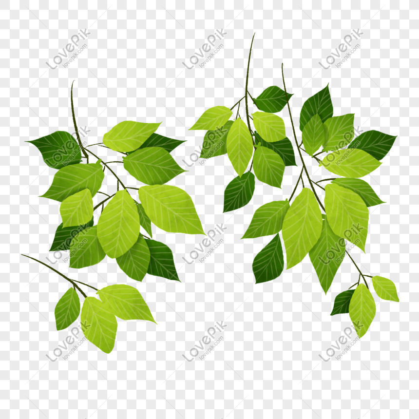 Cartoon Tree Branch Illustration Png Image Picture Free Download 401569627 Lovepik Com