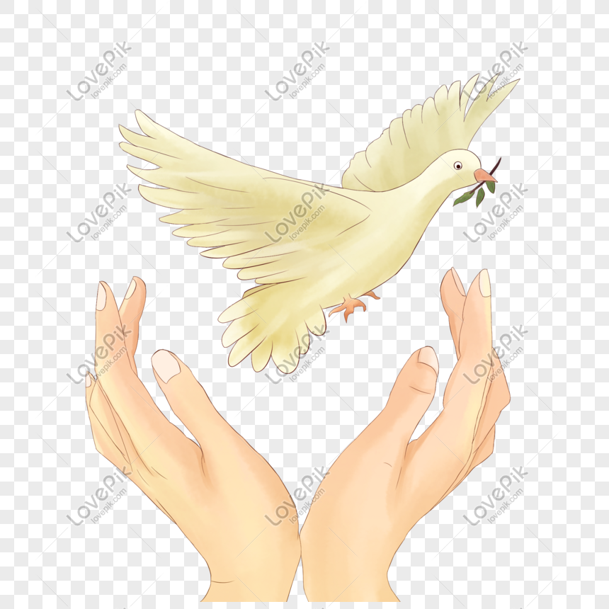 Flying Pigeons Illustration With Hands Png Image Picture Free Download 401608592 Lovepik Com Download now the free icon pack 'hand drawn'. lovepik