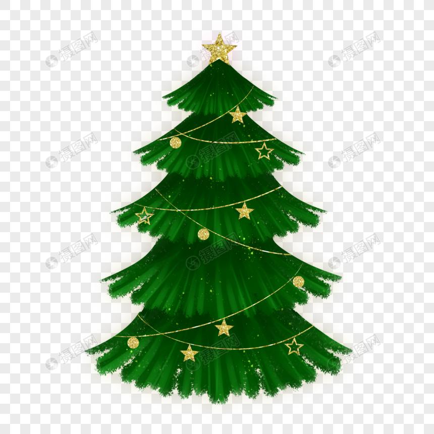 pohon pinus natal natal