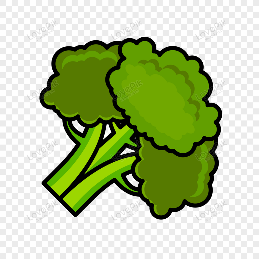 vector broccoli fresh vegetable png image picture free download 450006361 lovepik com vector broccoli fresh vegetable png