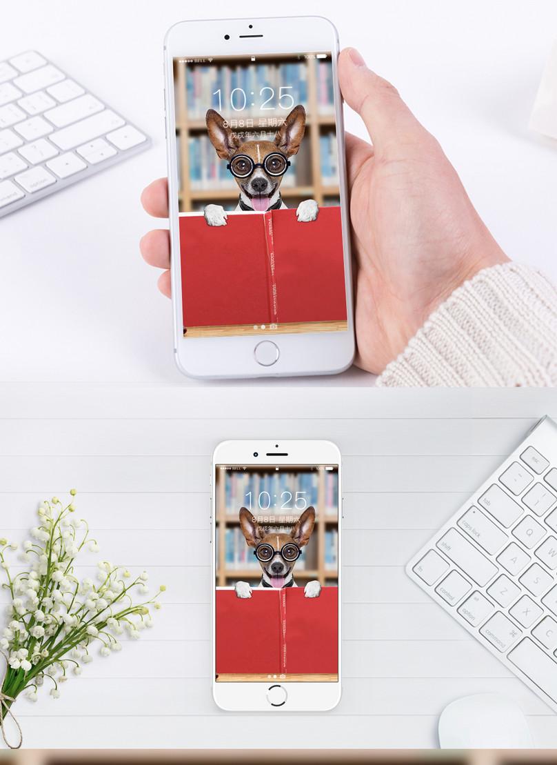 かわいいペットの携帯壁紙イメージ 背景 Id 400197288 Prf画像