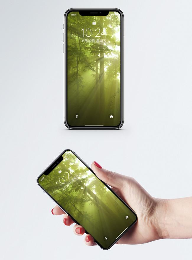 Bilder Zum Sonnenschein Wald Mobile Wallpaper Download Hintergrunde Id400258322 Jpg Bilder Prf De Lovepik Com