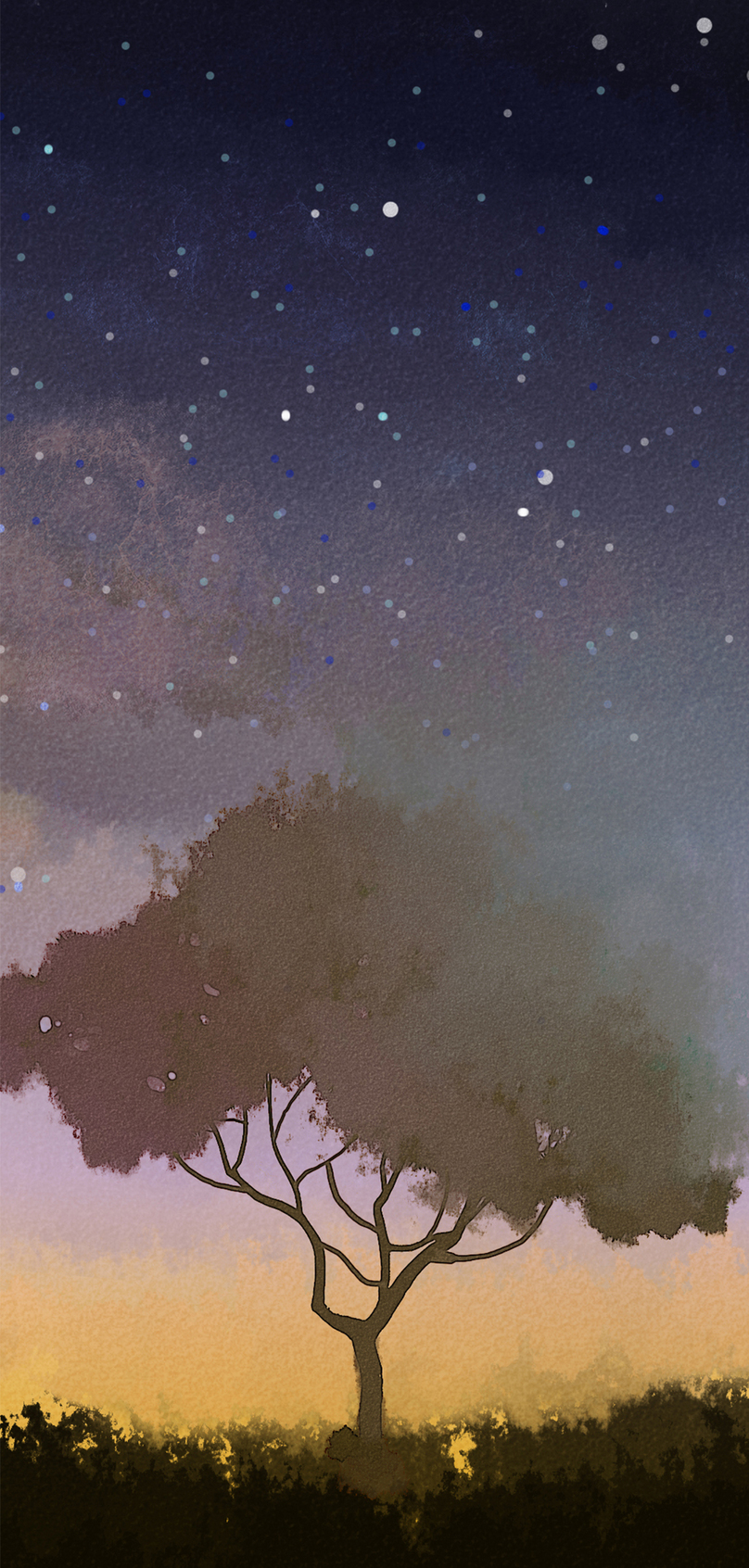 Kertas Dinding Pokok Kertas Bintang Gambar Unduh Gratis Imej