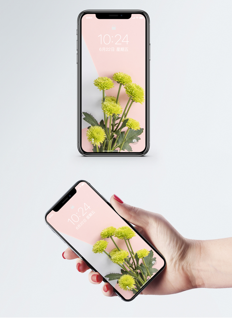 A Bunch Of Flower Cell Phone Wallpaper Backgrounds Image Picture
