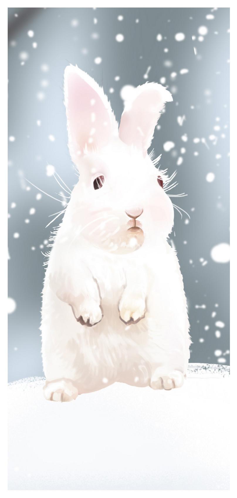 ウサギの携帯壁紙イメージ 背景 Id 400445368 Prf画像フォーマット