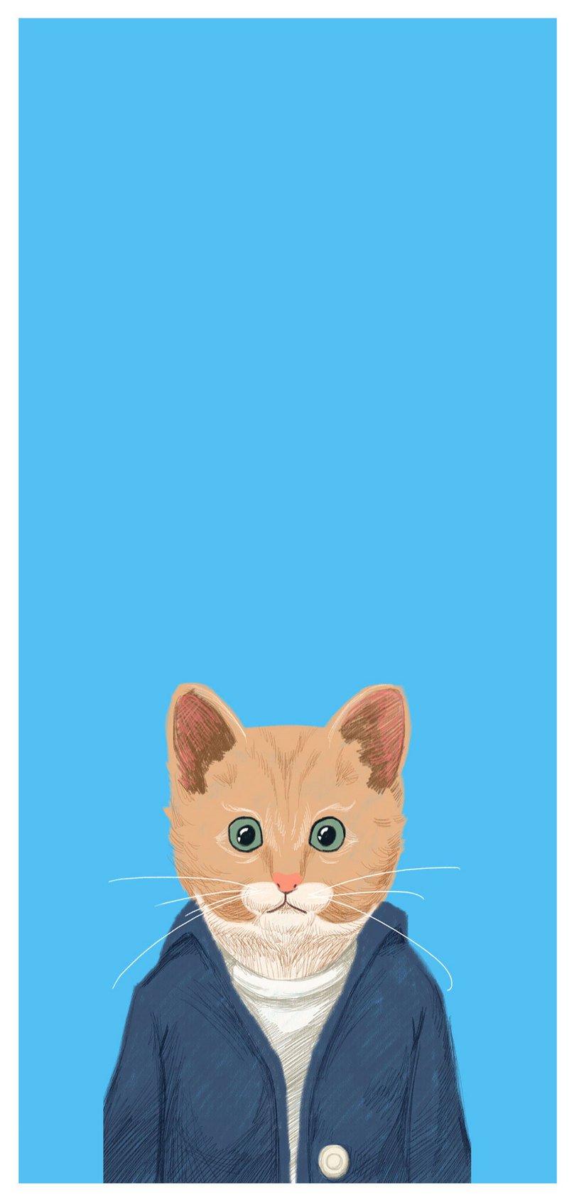 Cartoon Cat Mobile Wallpaper Backgrounds Images Free