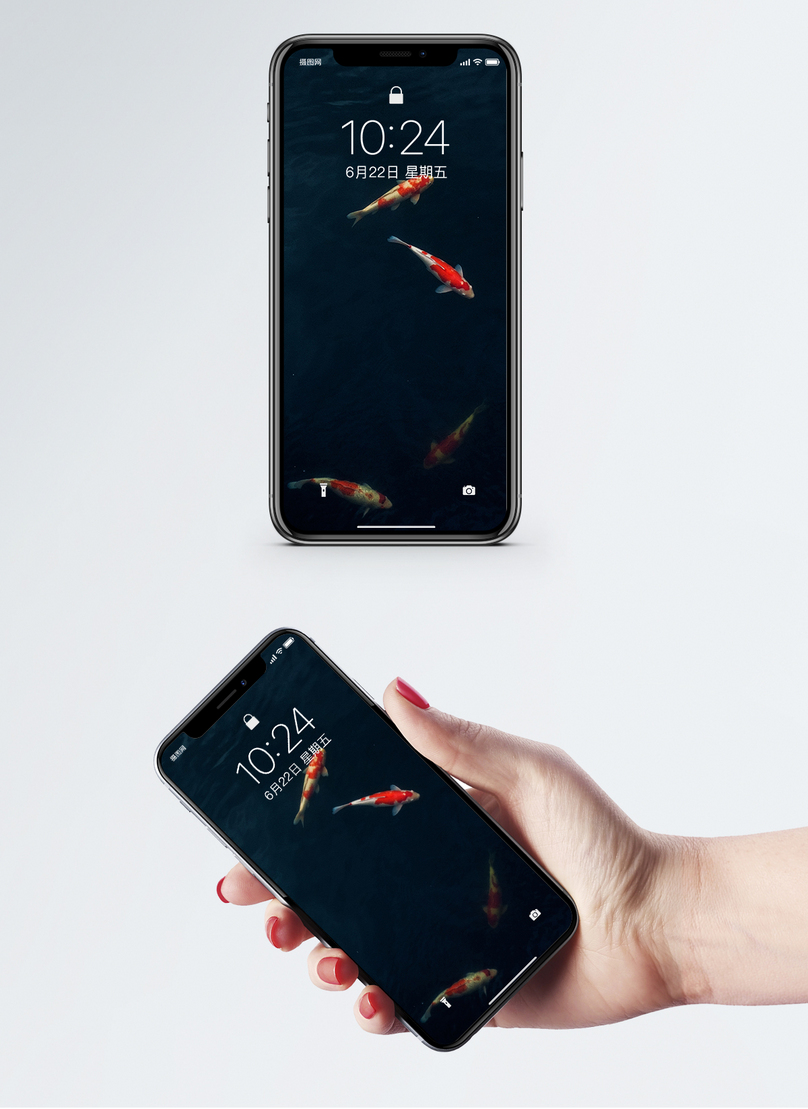 Koi Mobile Phone Wallpaper Backgrounds Image Picture Free