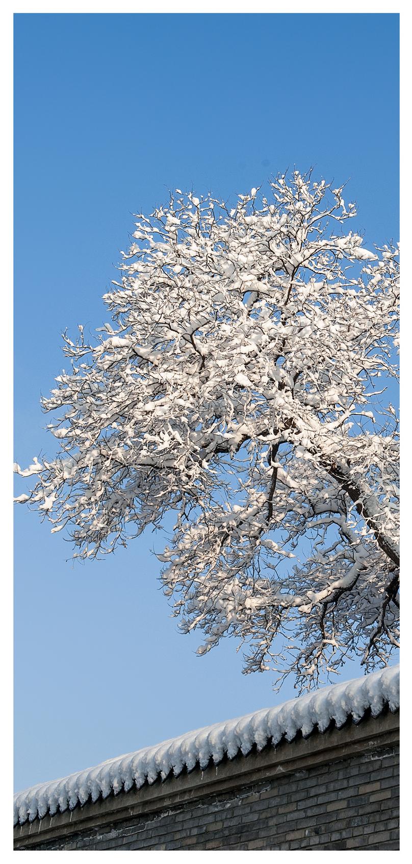 wallpaper salju pemandangan musim dingin gambar unduh gratis_