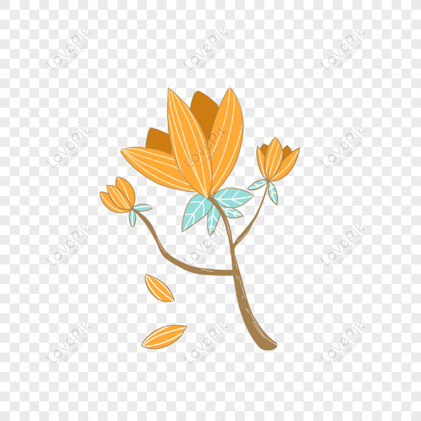 Paling Bagus 10+ Gambar Lucu Tentang Bunga - Gambar Bunga ...