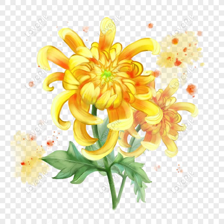 Gratis Bunga Krisan Kuning Bunga Kecil Dot Rendering Daun Hijau