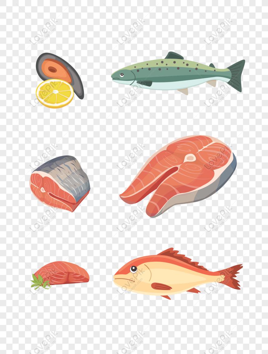 Gratis Elemen Vektor Kelas Makanan Laut Ikan PNG & AI
