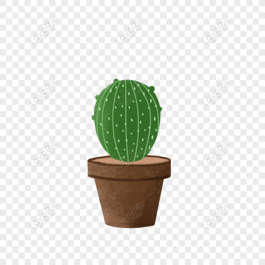 big cactus potted plant elements png