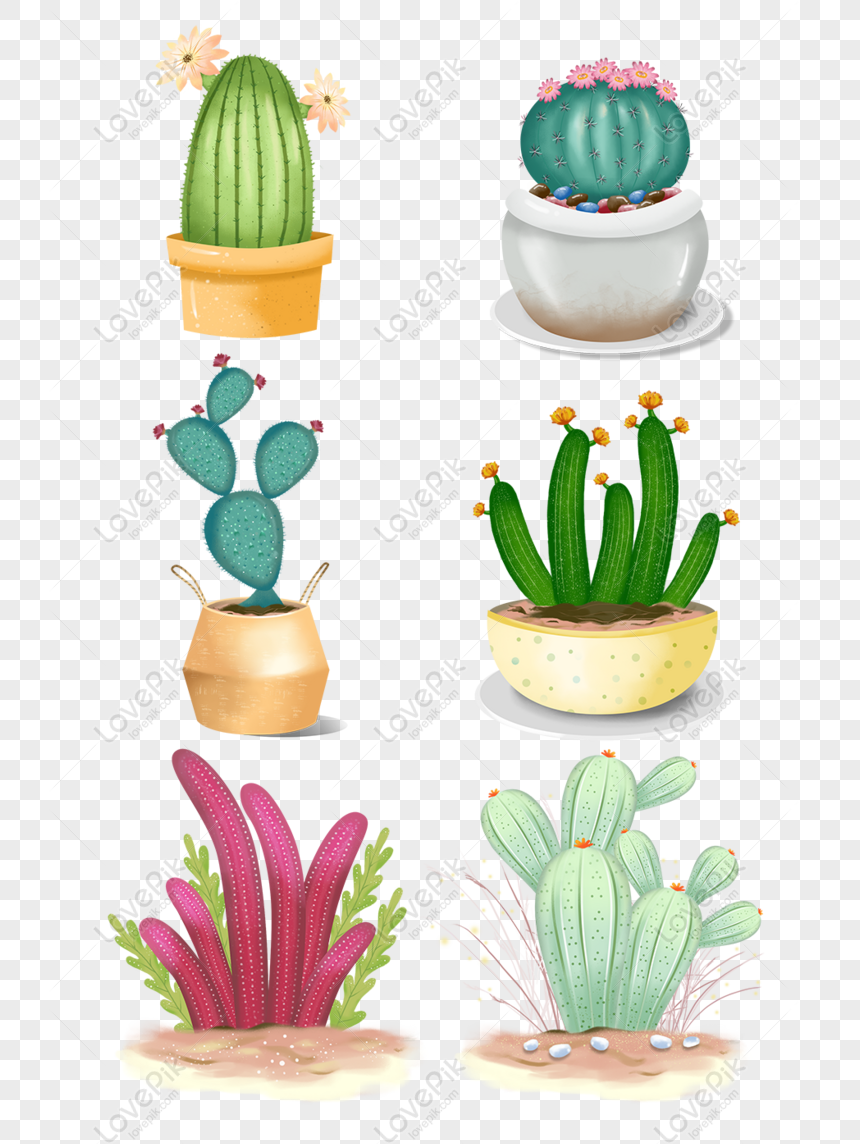 Free Hand Painted Beautiful Cute Cartoon Fresh Cactus Plant Flower Png Psd Image Download Size 1024 1369 Px Id 833544788 Lovepik