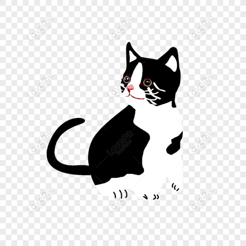 free a black and white patterned cat design element png psd image download size 2000 2000 px id 833588953 lovepik white patterned cat design element png