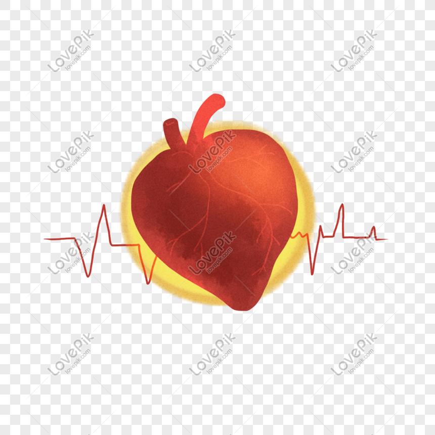 80 Gambar Animasi Jantung Terbaik
