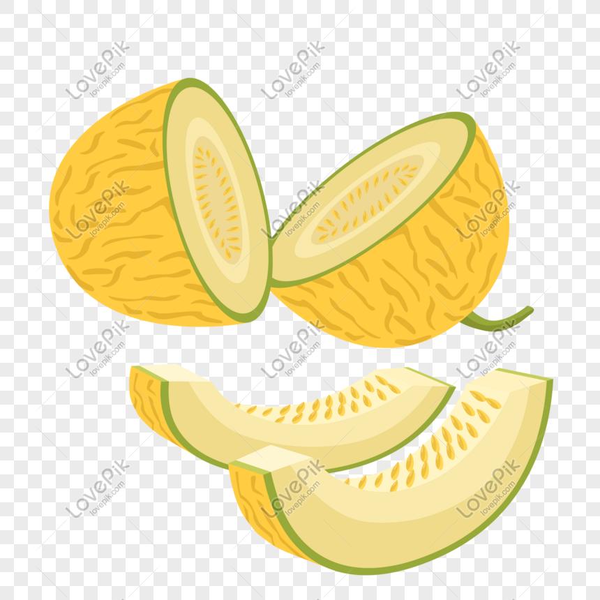 ilustrasi vektor melon png grafik gambar unduh gratis lovepik ilustrasi vektor melon png grafik