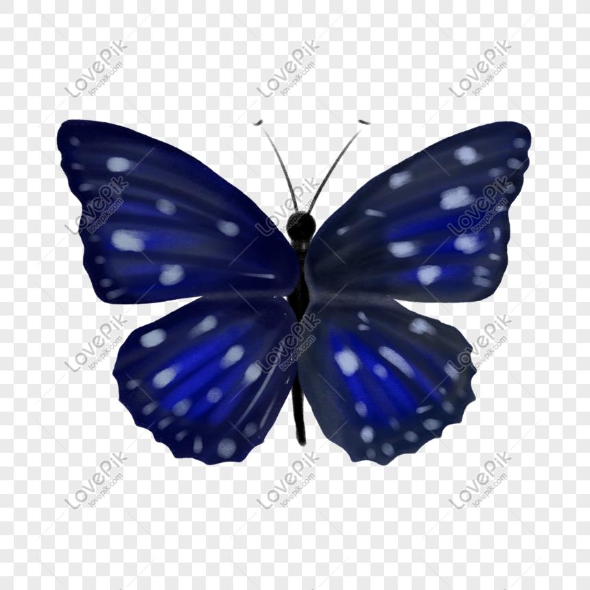 Biru Cantik Pera 抠 Png Bahan Telus