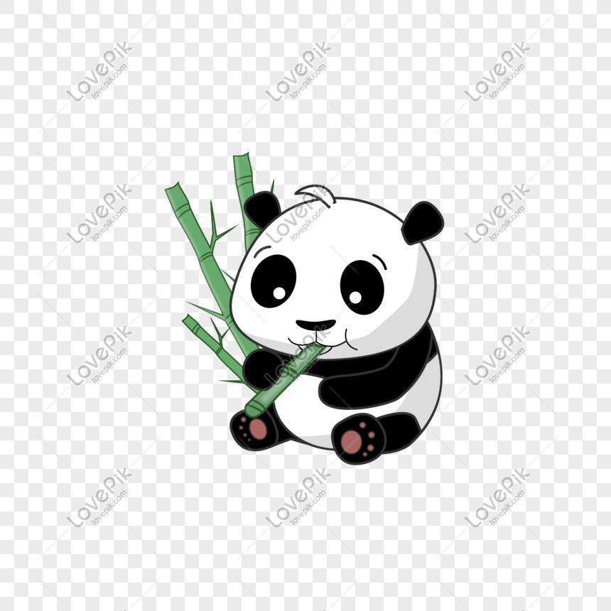 Photo De Panda Mignon Mangeant Du Matériel De Dessin Animé
