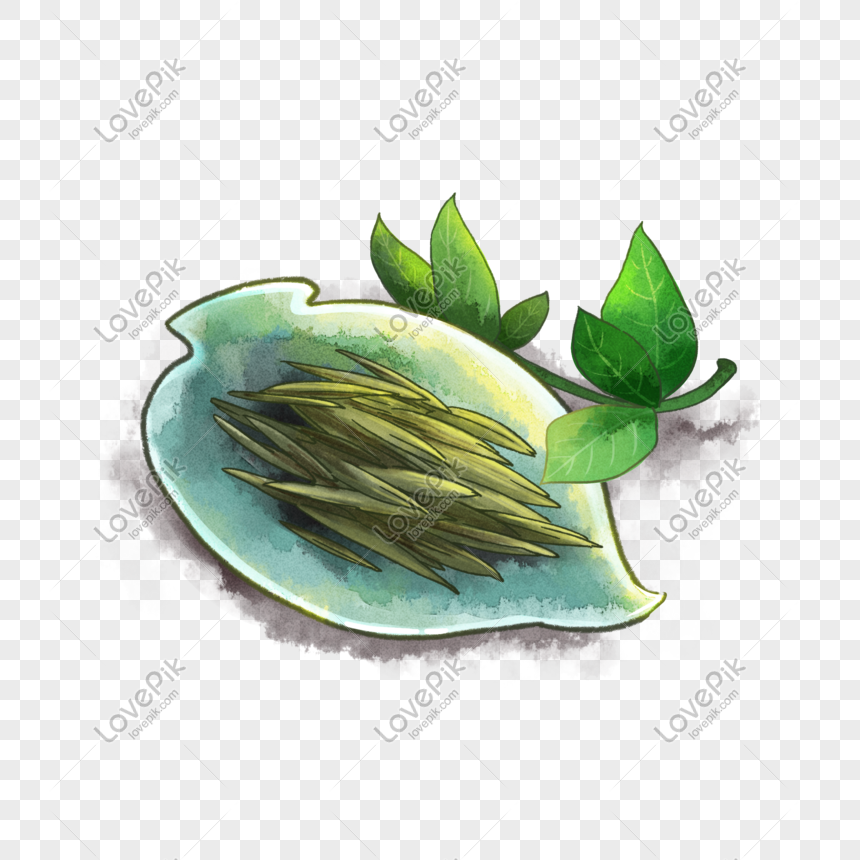 Dried Green Tea Leaves Png Elements Png Image Picture Free Download 728339741 Lovepik Com