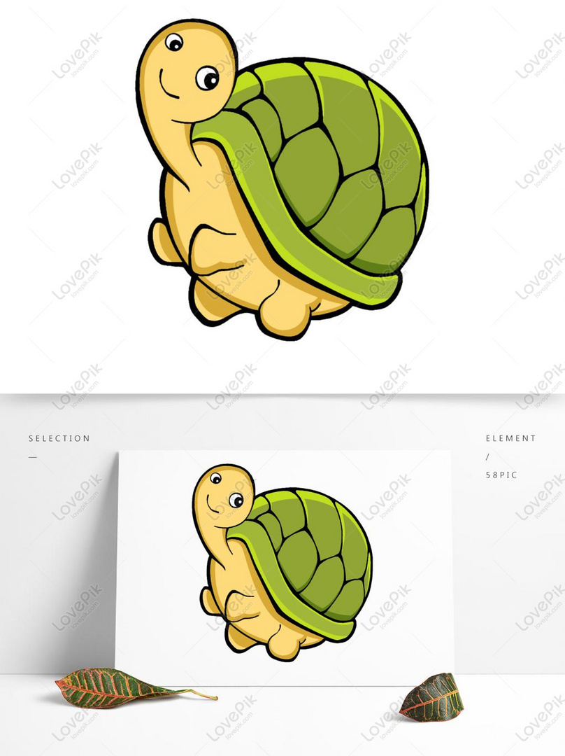 Marine Animal Series Turtle Q Edition PSD Images Free