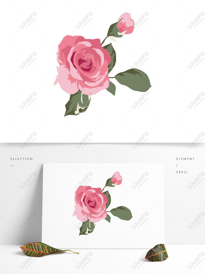 Hand Drawn Minimalistic Valentine Rose Graphics Imagepicture Free