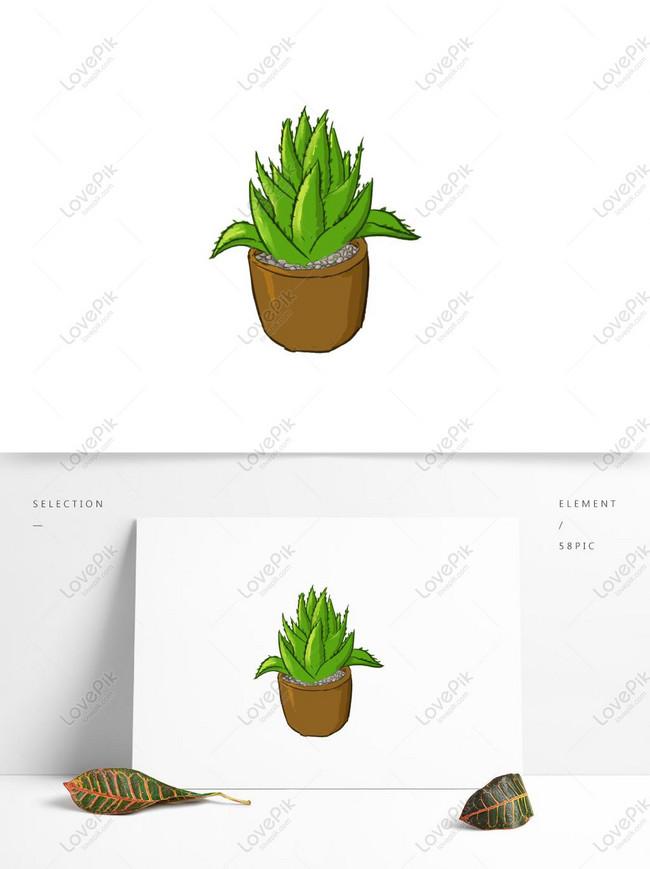 Lidah Buaya Tanaman Yang Digambar Tangan Kartun Komersial Elemen Gambar Unduh Gratis Grafik 732305733 Format Gambar Psd Lovepik Com