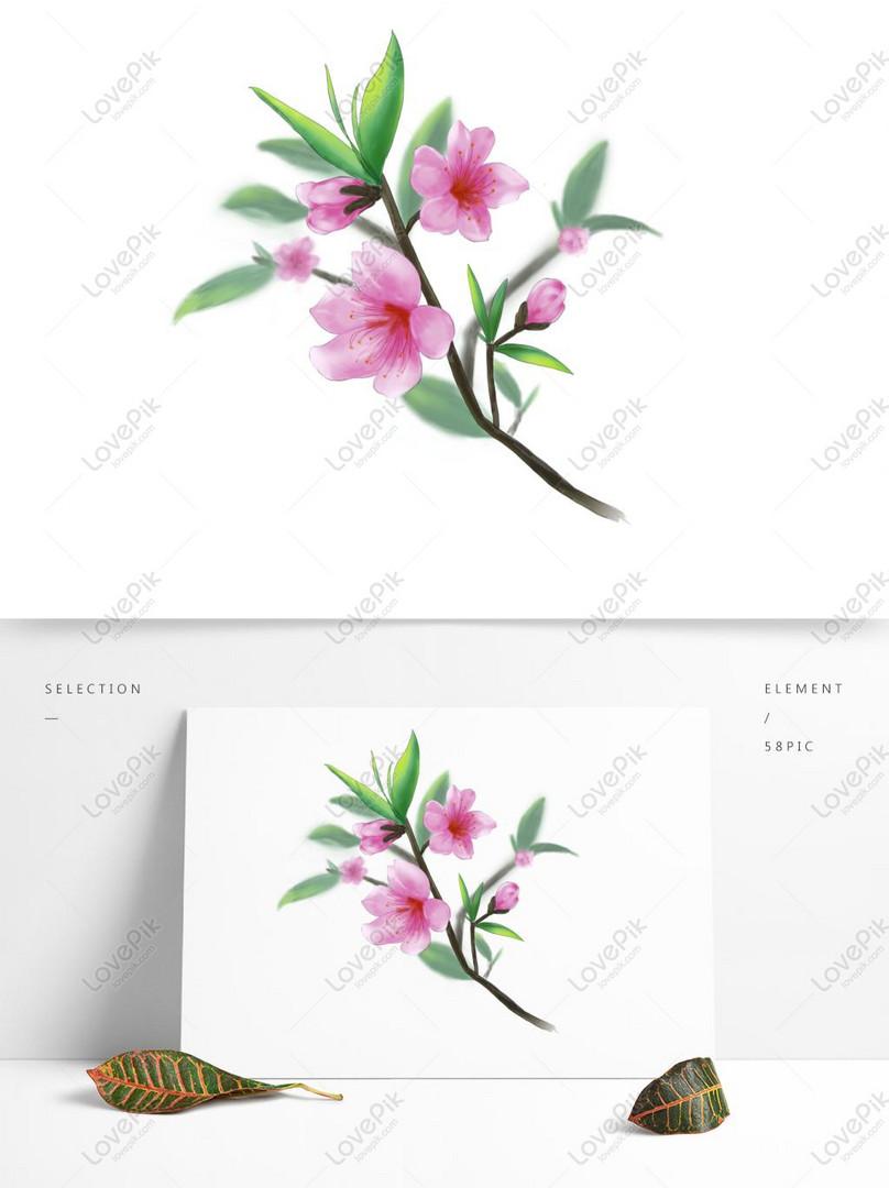 peach blossom pink peach blossom peach tree branch