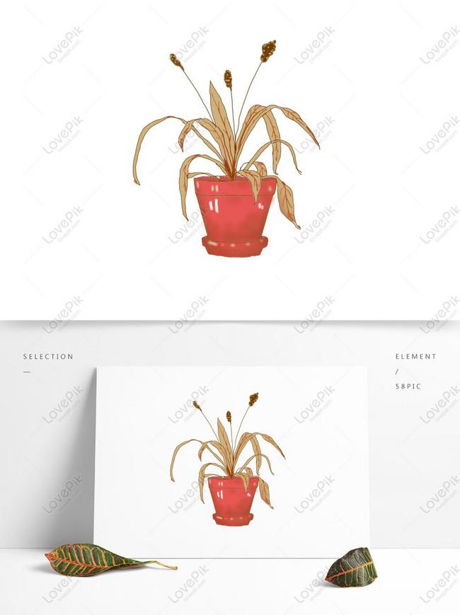 Bahan Tanaman Layu Yang Dilukis Dengan Tangan Tanaman Bawah Tra Gambar Unduh Gratis Grafik 732345004 Format Gambar Psd Lovepik Com