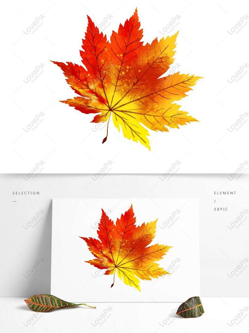 lá phong mùa thu mùa thu lá cây vẽ tay đơn giản