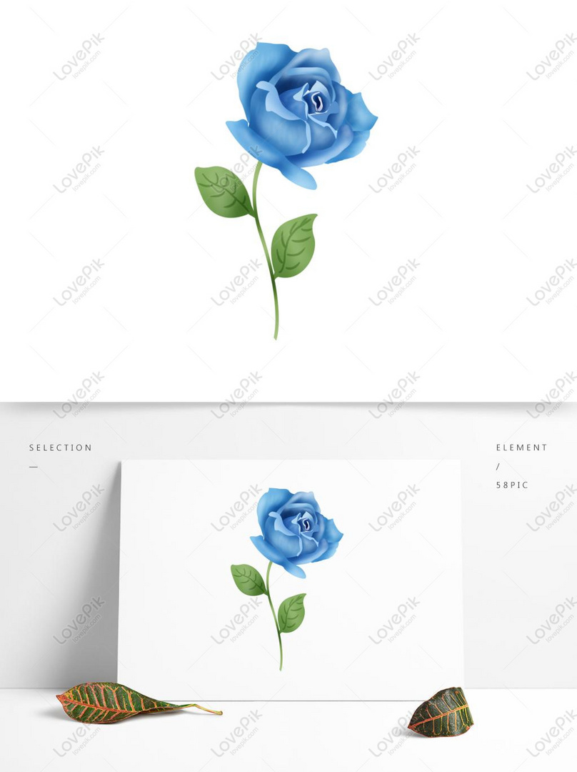 Vector Hand Drawn Blue Rose Flower PSD Images Free