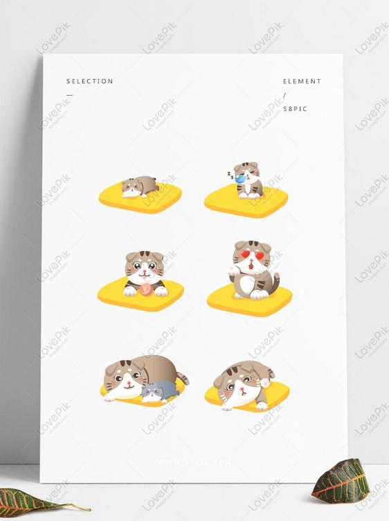 840+ Gambar Pertumbuhan Hewan Kucing HD