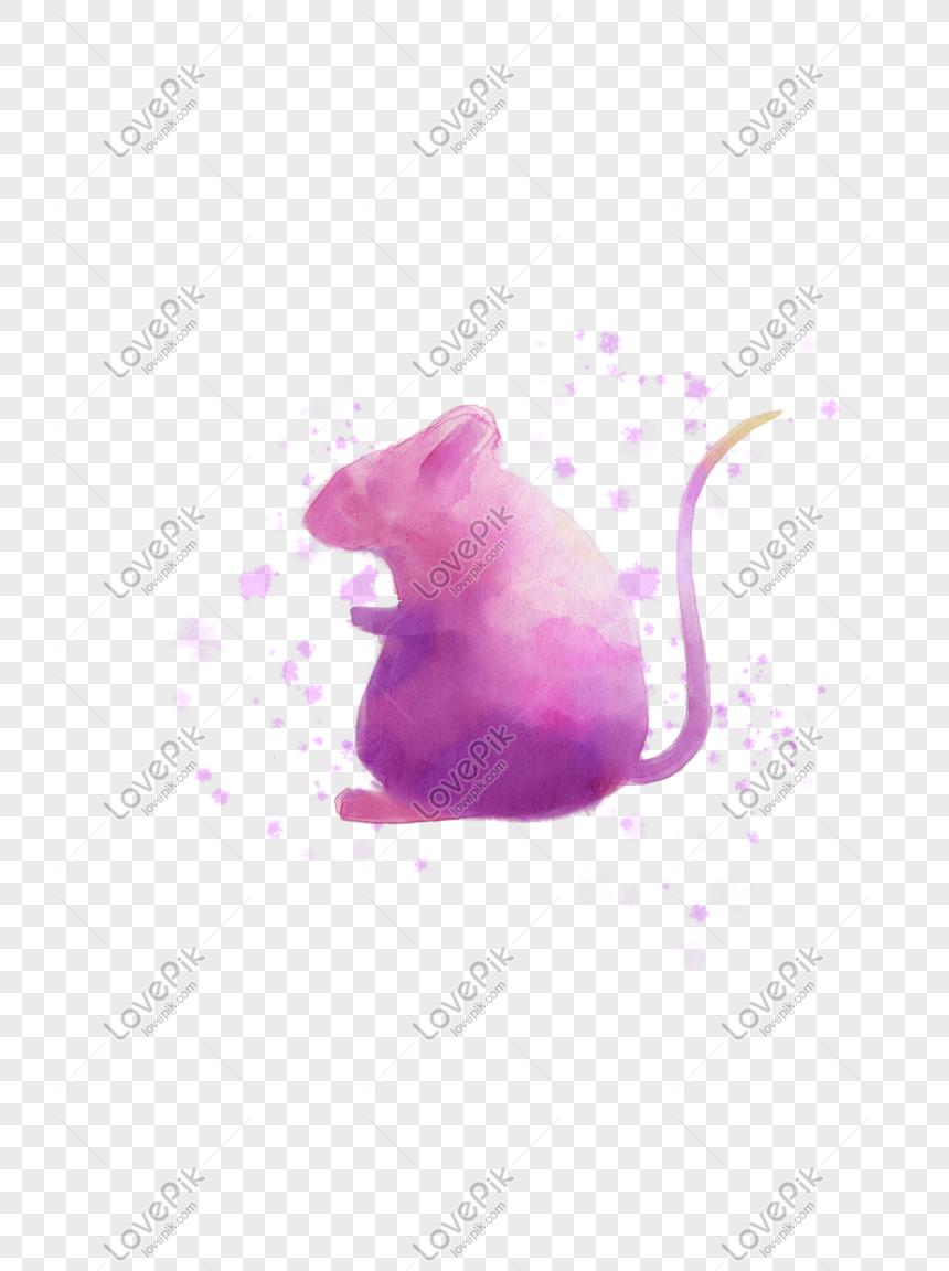 54 Gambar Hewan Tikus Air Terbaik