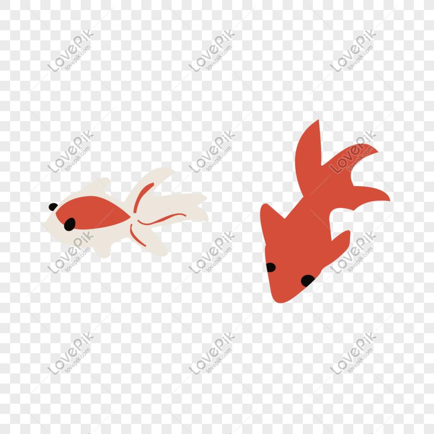 92+ Gambar Vektor Ikan Mas HD