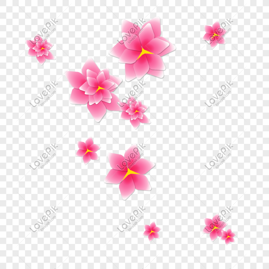 Fiori Png.Materiale Png Fiore Rosso Immagine Gratis Grafica Numero