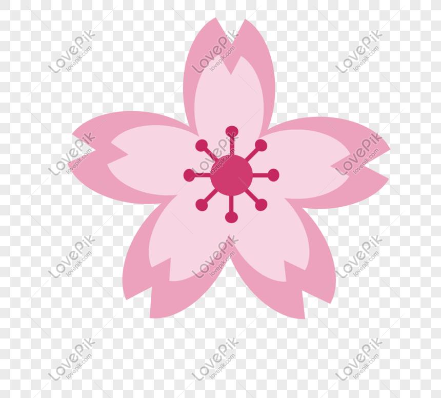 cartoon cherry blossom vector sticker png