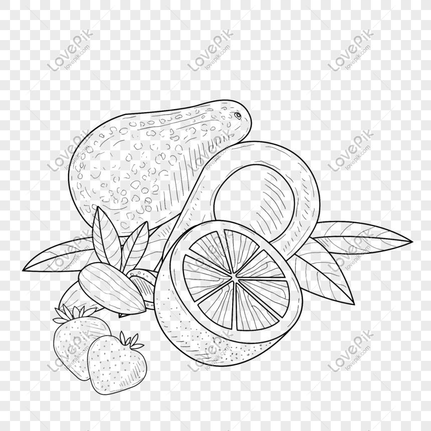 Lukisan Garis Makanan Dan Bahan Reka Bentuk Buah Gambar Unduh Gratis Imej 610525393 Format Psd My Lovepik Com