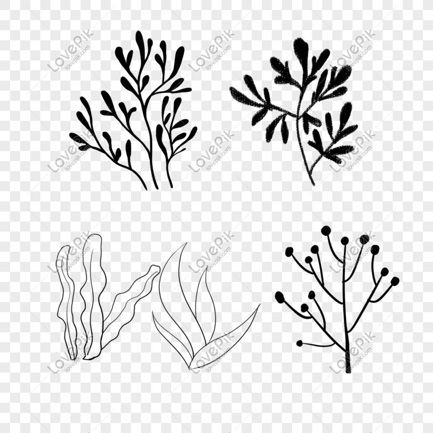 Lukisan Garis Rumput Laut Yang Dicat Tangan Gambar Unduh
