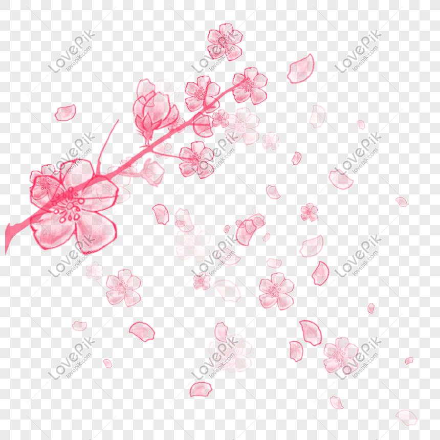 beautiful cherry blossoms petal elements png