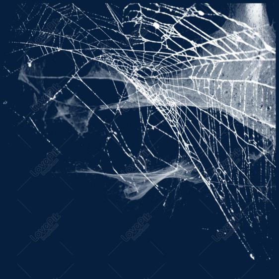 Antik Kale Korku Orumcek Agi Ozel Tasarim Resim Grafik Numarasi